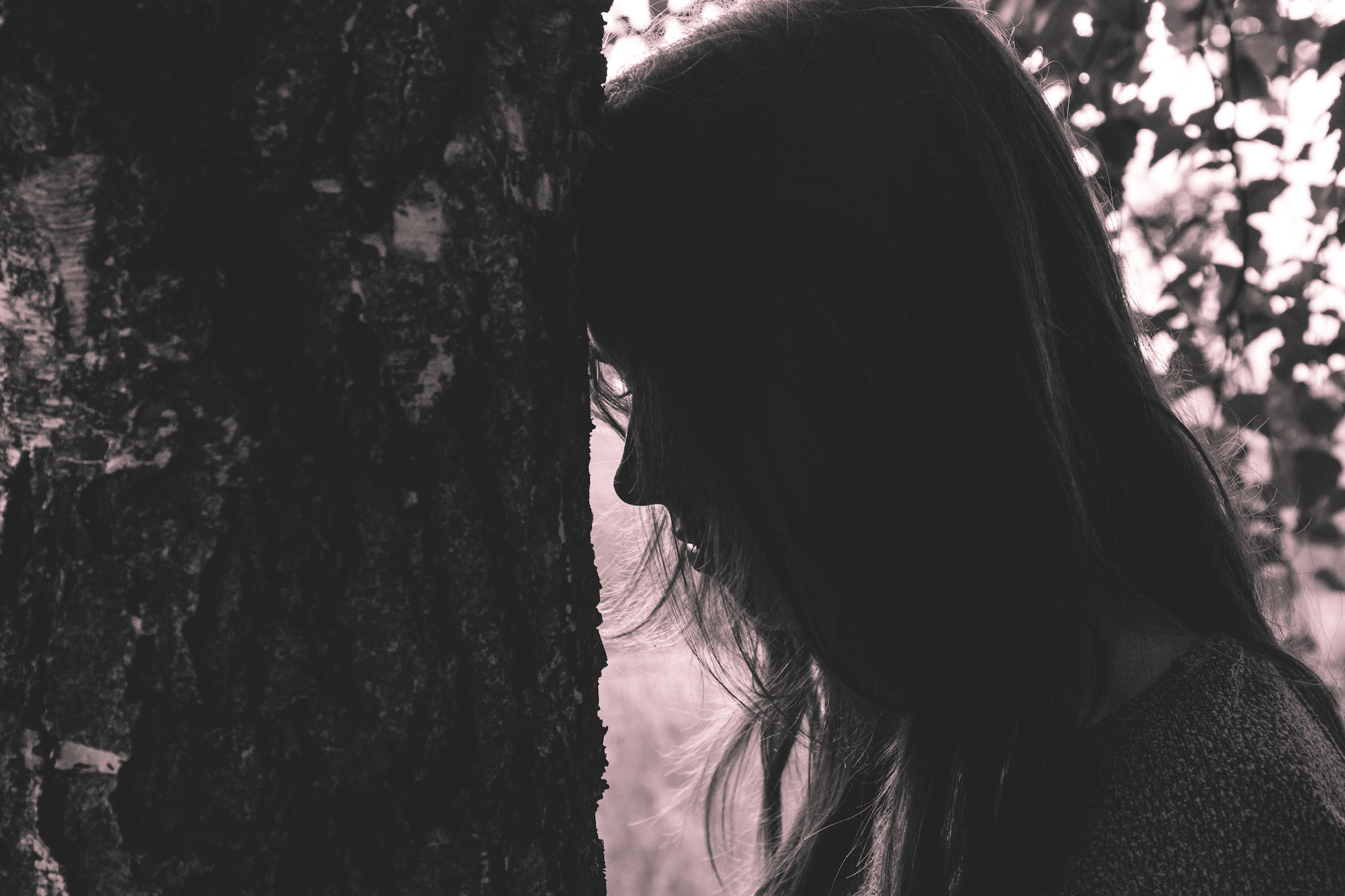 boss-fight-free-high-quality-stock-images-photos-photography-woman-head-tree