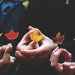 The 7 C's of Thanksgiving: Approaching Family Togetherness with Grace